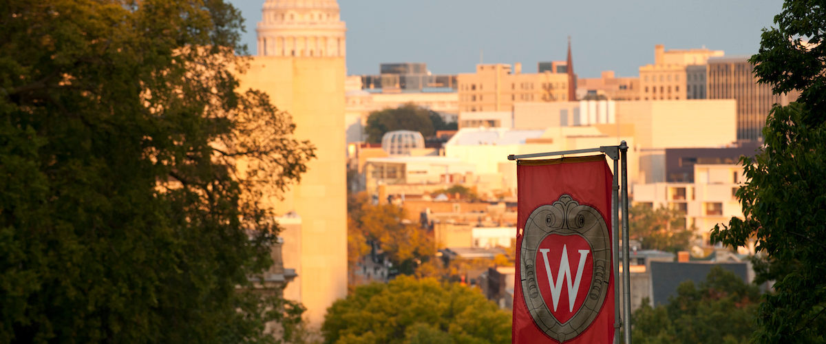 image of capital and UW flag